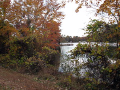 Autumn colors Walnut Creek Lake Raleigh NC 0490