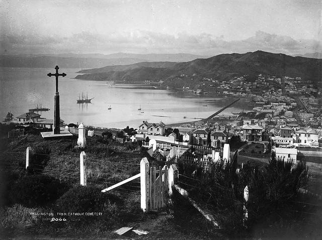 View over Wellington Harbour in 1885 showing early development.
