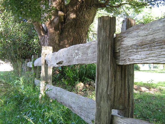 Bellingen Fence Dowle St Flickr Photo Sharing