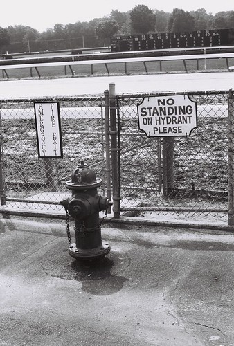 No Standing on Hydrant, Please - Saratoga