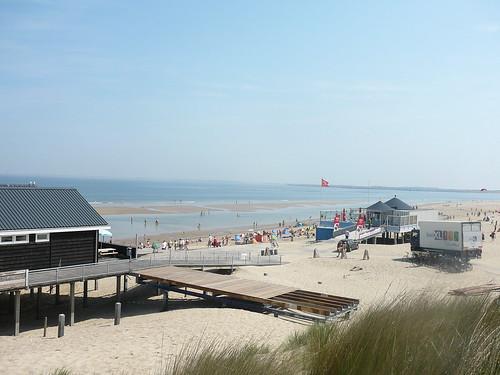 Strand mit Hund Nordsee Küste Renesse