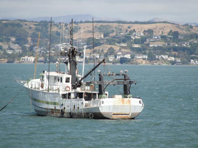 Fishing boat san francisco bay flickr photo sharing for San francisco fishing