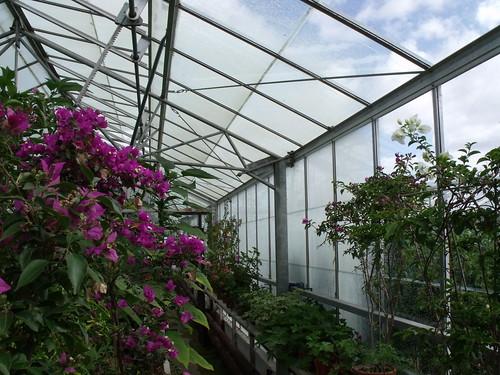 Greenhouses 015
