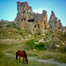 Grazing Horse & Ruins, Capadocia Turkey [Lightroom 3 - Redux]