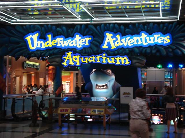 Mall Of America Aquarium 2 Flickr Photo Sharing