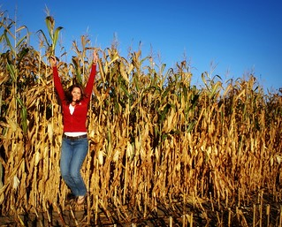 172/365 Jumpin in the corn field...
