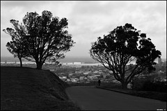 View on the Harbour Bridge from Mount Eden