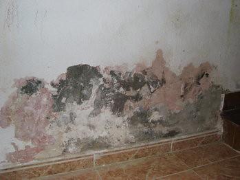Humedad en paredes por capilaridad arkigrafico - Manchas humedad pared ...