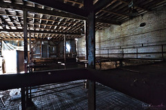 Swine Prison