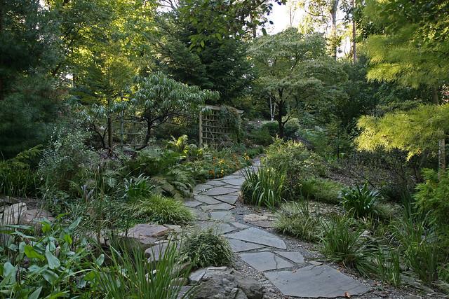 Susie Harwood Garden Unc Charlotte Botanical Gardens Flickr Photo Sharing