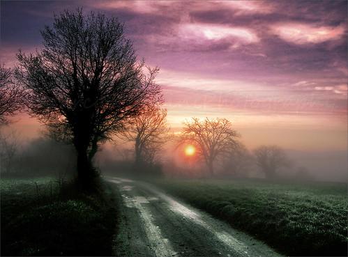 italy sunrise nikon italia tuscany paths toscana bestcapturesaoi elitegalleryaoi mygearandme mygearandmepremium marcofrancini arunte marcofranciniphotography