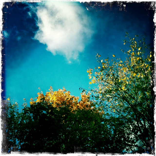 Autumn skies