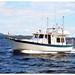 Small photo of Willard 40 Pilot House Trawler