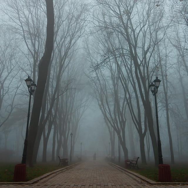 Mariyins'kyi Park