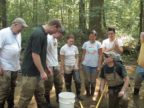 Image of summer interns and DEP staff working together to monitor streams