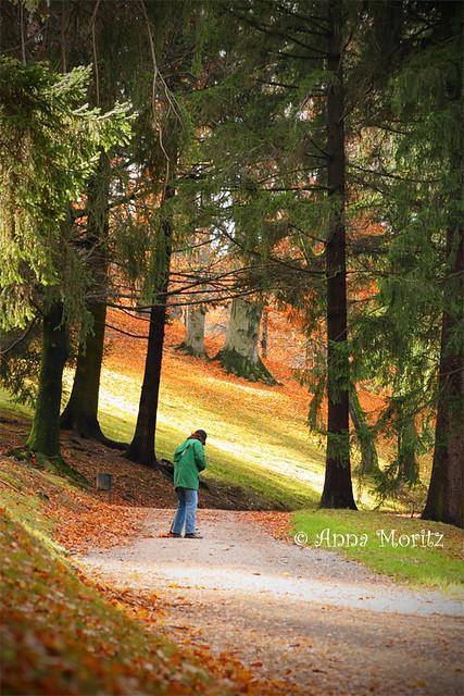 Autumn in castle Ambras park