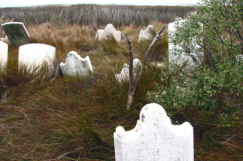 Stone Ghosts in the Marsh