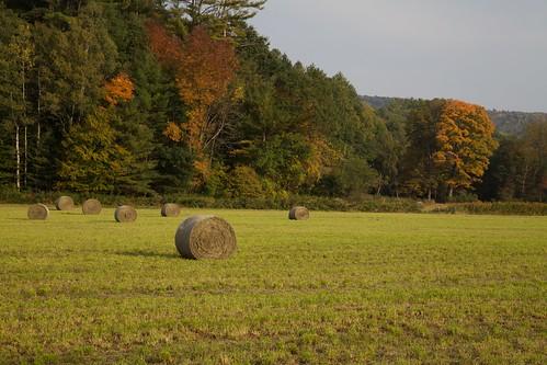 vermont hay haybale quechee ef24105mmf4lisusm quecheeinn marshlandfarm