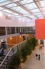 Quinn School of Business