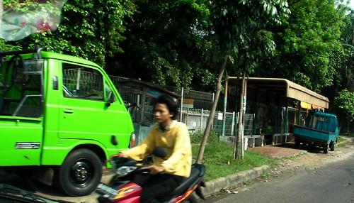 Green Colt 2010-05_sany0273