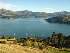 Akaroa Harbour, Banks Peninsula, Canterbury, New Zealand