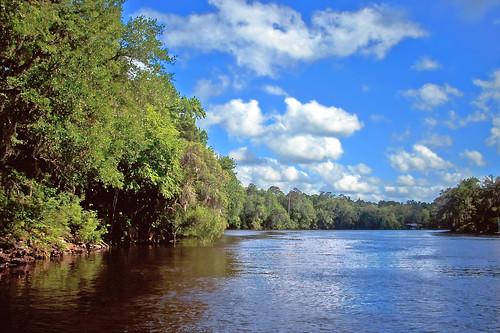 trees water clouds river woods stream florida fanningsprings suwanneeriver fanningspringsstatepark