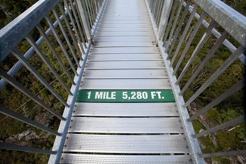 statepark park bridge trees sunset sun mountains northcarolina bluesky grandfathermountain swingingbridge averycounty ncpedia