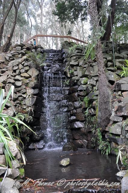at Alfred Nicholas garden