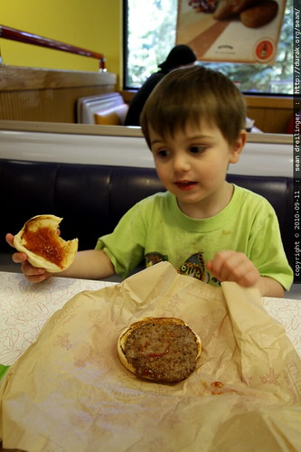 sequoia's patented hamburger dissection