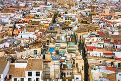 Tejados de Sevilla // Sevilla roofs