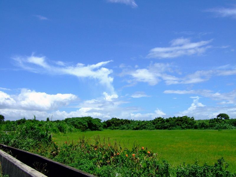 藍天白雲-1