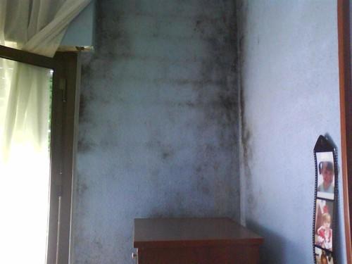 Confusion de condensacion por manchas de hongos en paredes - Humedad por condensacion en paredes ...