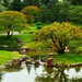 Tilt-Shift Tree at Nikka Yuko Japanese Garden by Stroke_and_Distance