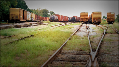 beach 35mm florida rangefinder fernandinabeach boxcars railroads ameliaisland vintagecameras yashicags yashinon17lens