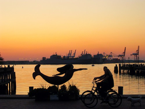 sunset dog water bicycle waterfront norfolk va mermaid shipbuilding hcs blinkagain flipmode79