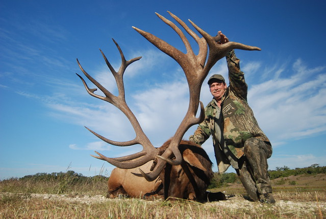 2010 World Record Bull Elk http://www.flickr.com/photos/huntingtexastrophies/5092227734/