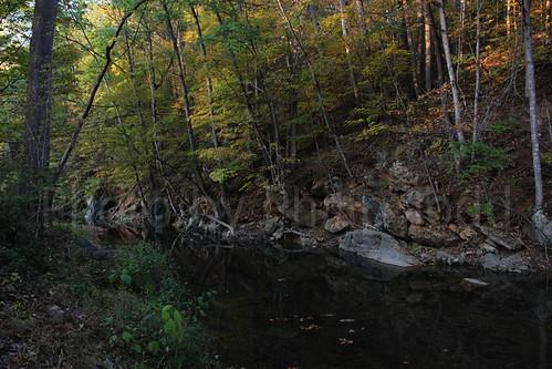 2010-10-10 stream fall colors 5748