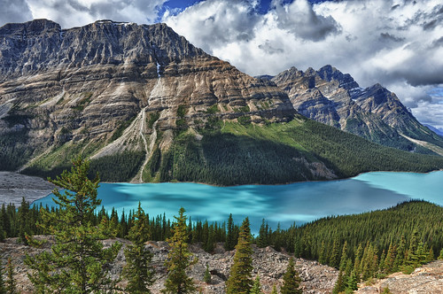 A Peyto Lake Moment