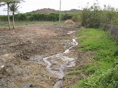 地下水位監測的代價。(圖片來源:邱郁文研究團隊)