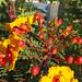 flowers1 by IncSlinger_pics