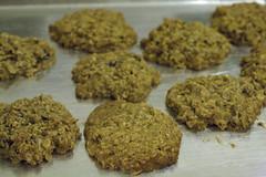 anzac biscuit, vegetarian food, cookies and crackers, food, dessert, snack food,
