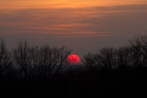 trees winter sunset sky sun midwest iowa cedarrapids