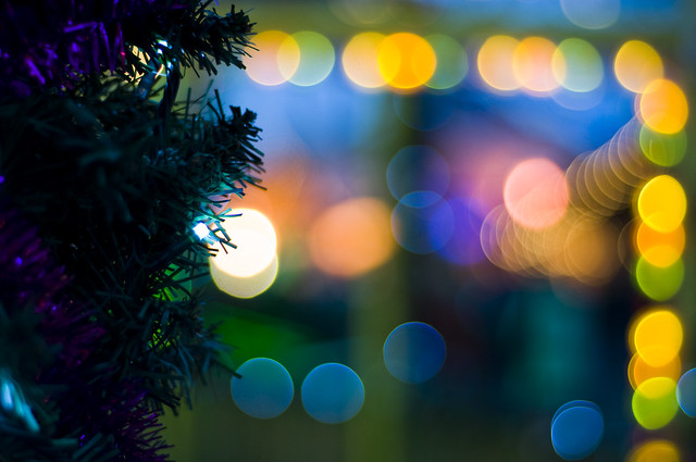 holiday lights bokeh