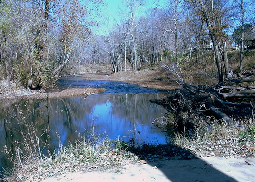 horse missouri swimminghole treeswing zalma castorriver oldmilldam
