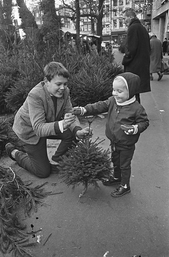 Jongetje koopt kerstboompje / Boy buying a Christmas tree