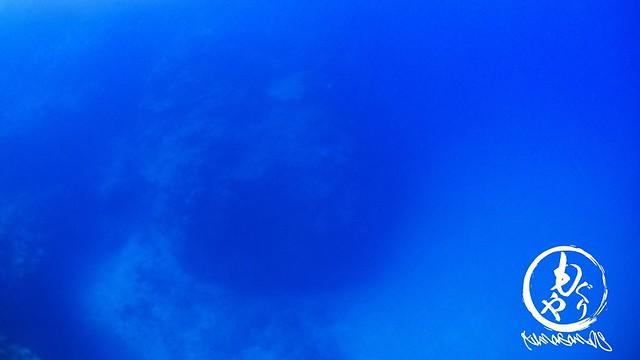 朝一で宮良ブルー見てきましたw