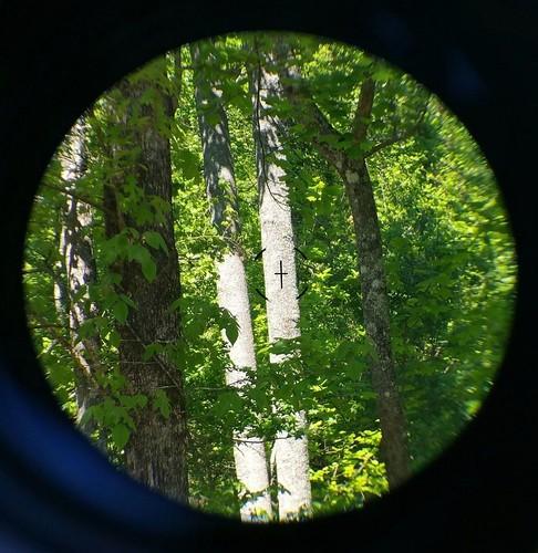 3x30 & 45 degree sights6