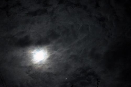 Night Sky Stars Texture Night Sky Texture