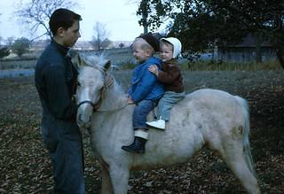 Pony 64