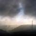 Bodega hill fog